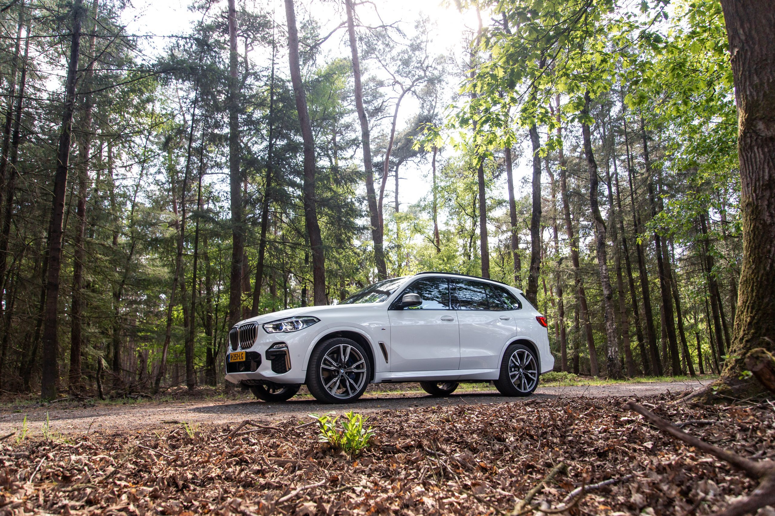 bmw x7 in forest